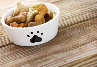 10 alimentos saudáveis para os cachorros