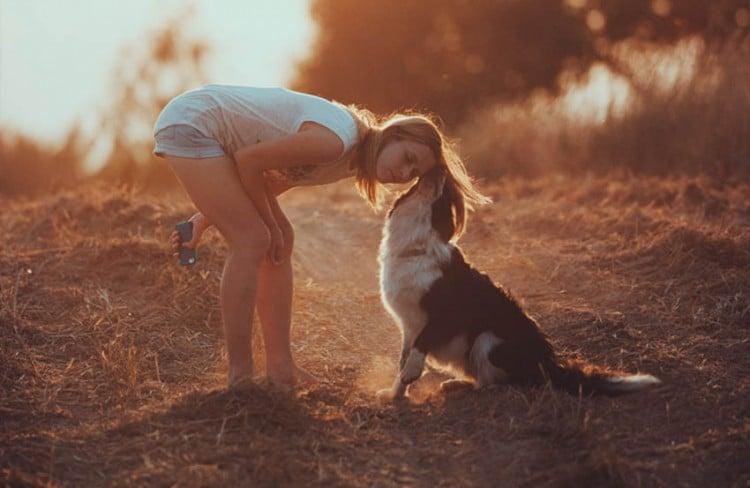 Cachorro: 5 razões para ter um