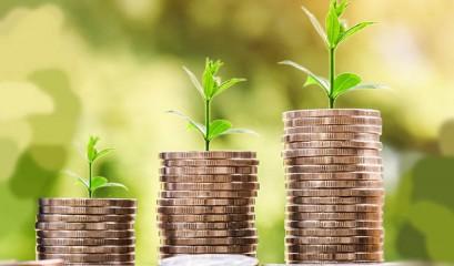 Diversificando os investimentos: CDB, LCI e Tesouro Direto