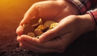 Por que fazer carteira de investimento é um bom negócio?